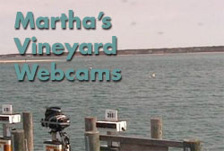Martha's Vineyard Webcams
